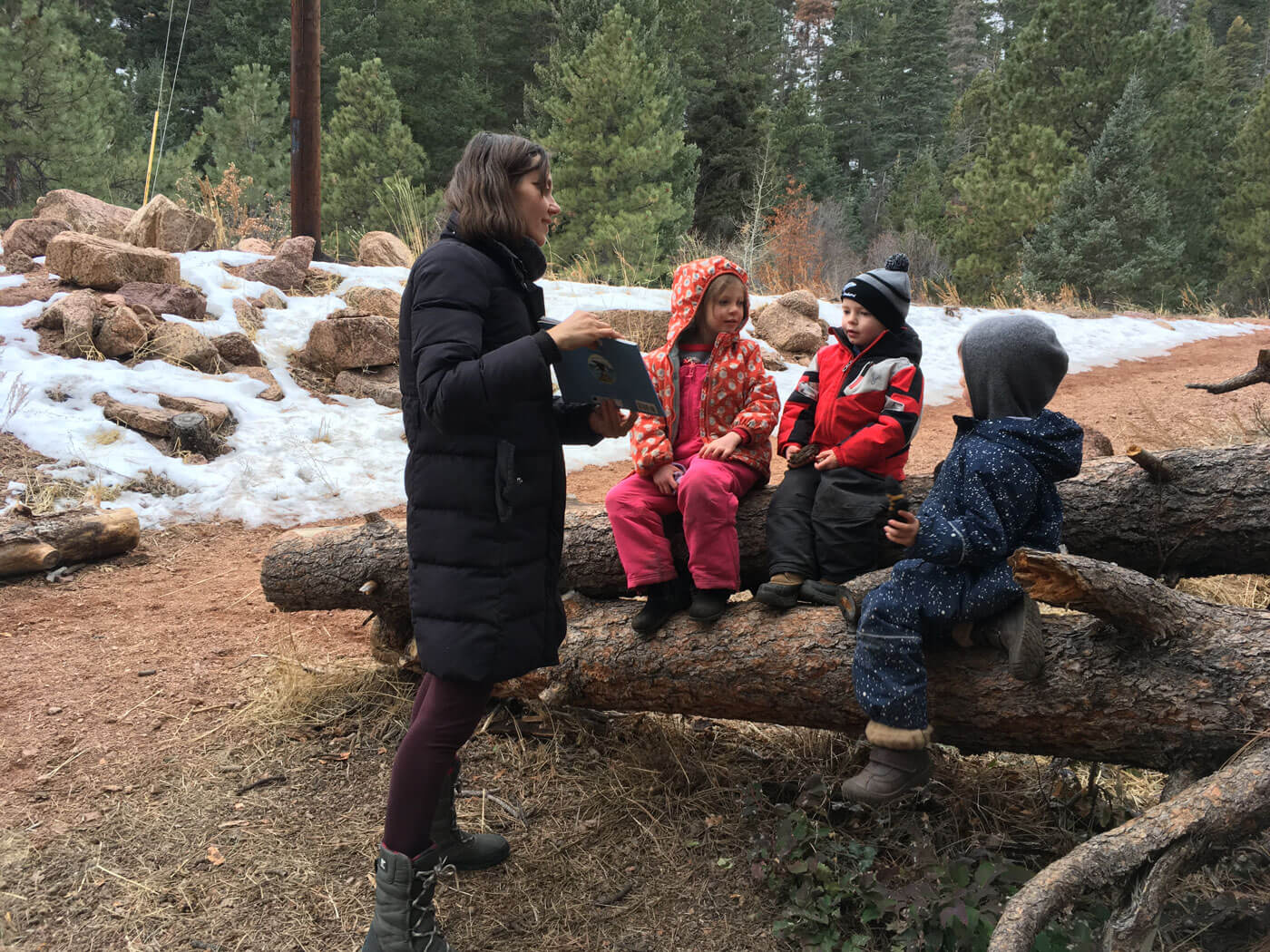 Learning about birds in the forest at Colorado Springs nature kindergarten forest school nature preschool in Palmer Lake