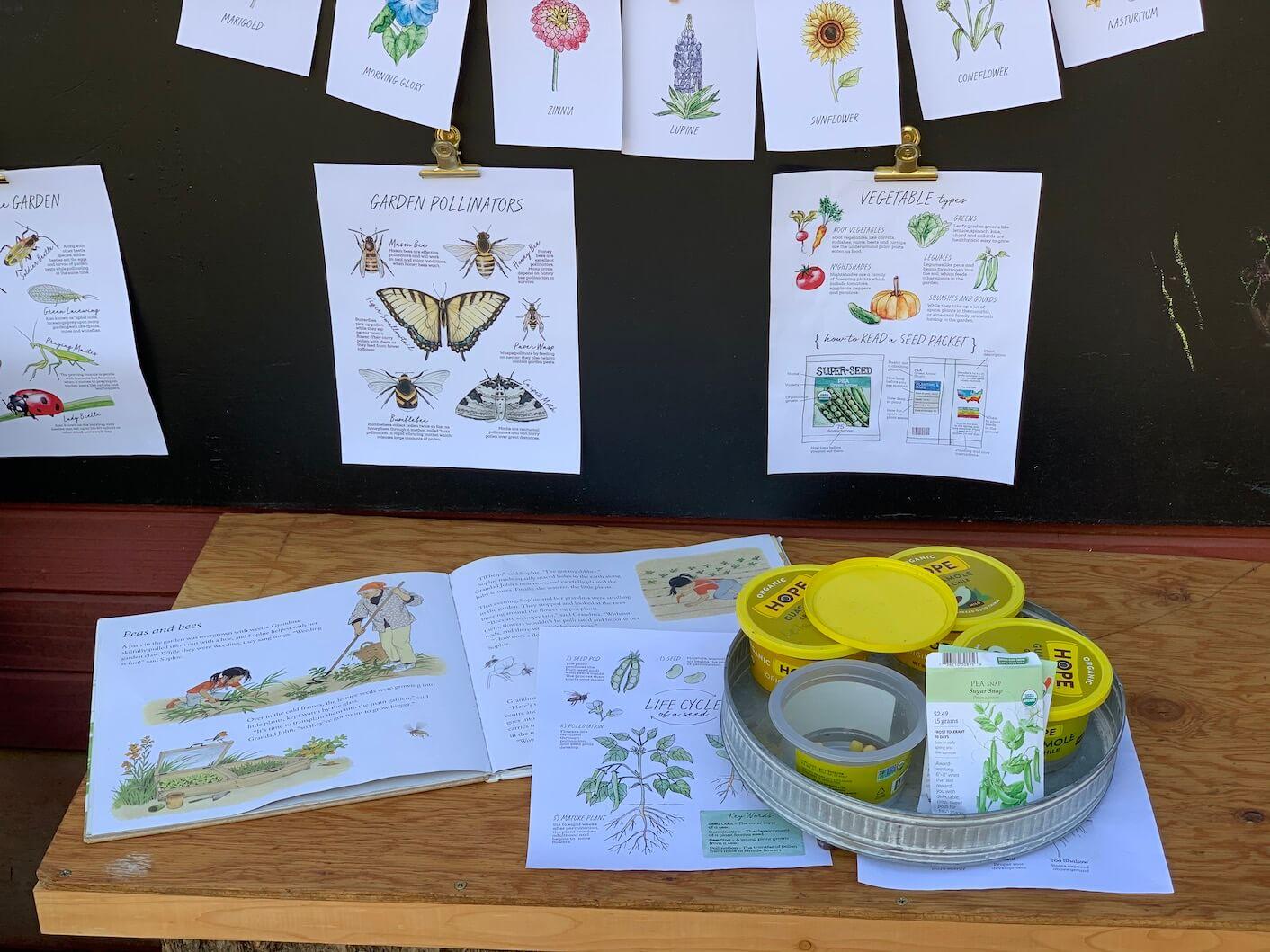 Colorado Springs outdoor school nature kindergarten